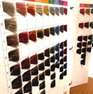 美容室 カラー チャート 資生堂