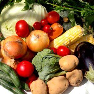 ビタミン ミネラル タンパク質 野菜 カロテン カロチン 食物繊維 鮮やか 種類 健康
